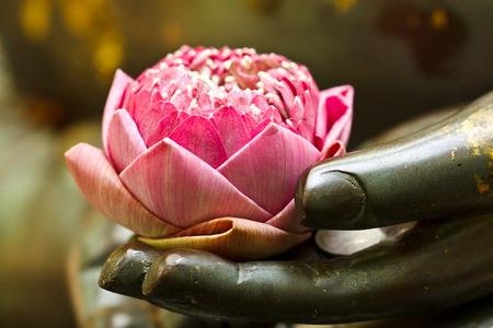 de roze lotus in de hand van Boeddha Stockfoto