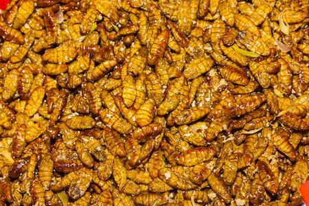 silkworm: fried silkworm