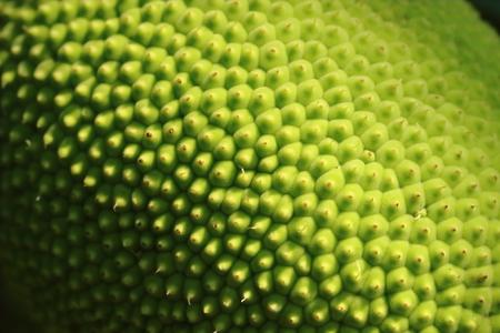 fresh breadfruit Banque d'images
