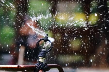 spattering: sprinkler in garden Stock Photo
