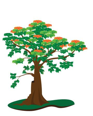 tree vector design Vector
