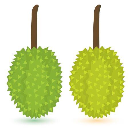 differentiate: durian fruit vector design