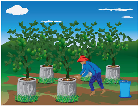 cultivation: agriculturist manure lemon plant vector design