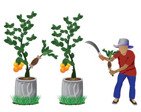 enten: landbouwer met citroen plant vector ontwerp Stock Illustratie