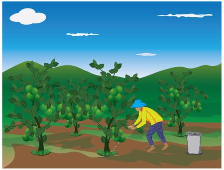 manure: agriculturist manure lemon plant vector design