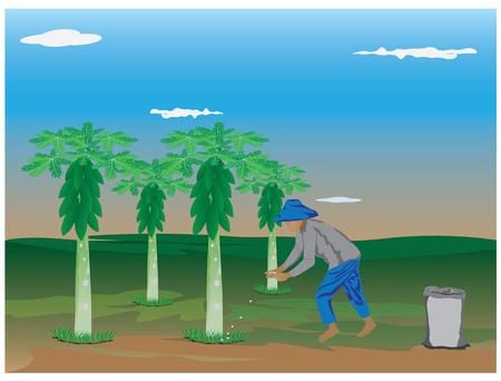 manure: agriculturist manure papaya plant vector design