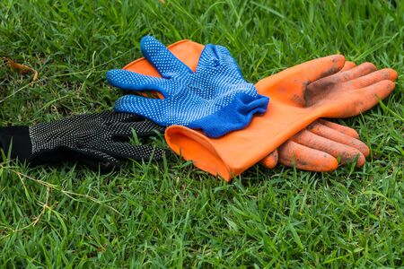 contended: the glove on grass Stock Photo