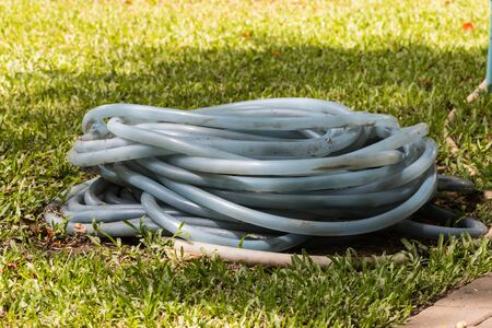 water hose: Water hose in the garden