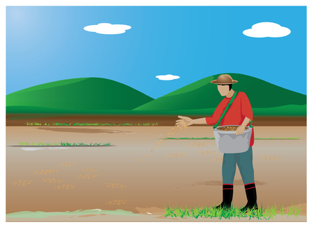 sowing: farmer sowing rice at paddy field vector design