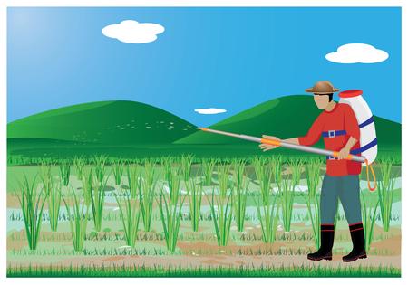 strew: agriculturist sprays rice plant vector design