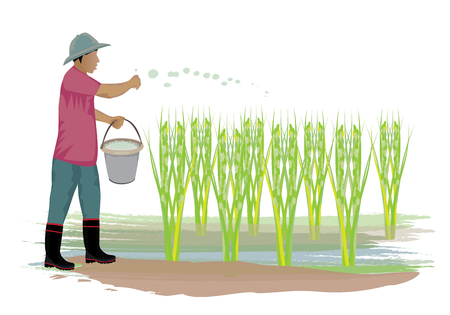 agriculturist manure rice plant vector design
