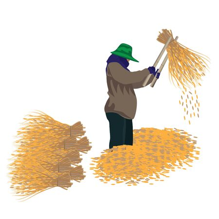 agriculturist: agriculturist with rice vector design Illustration