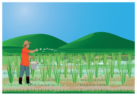 agriculturist manure rice plant vector design