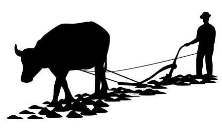 plow: farmer plow paddy field design Illustration