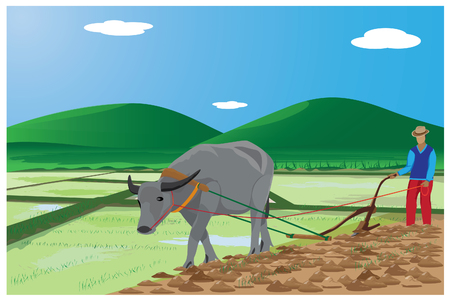 cultivator: farmer plow paddy field design Illustration
