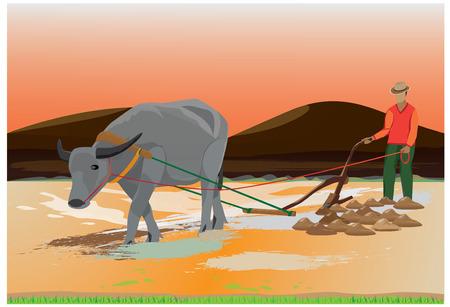 thresh: farmer plow paddy field design Illustration
