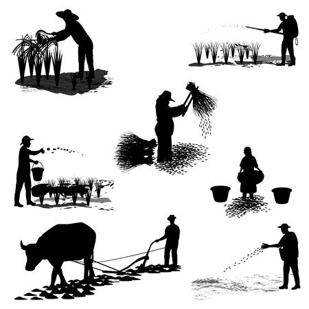 thresh: agriculture shape design