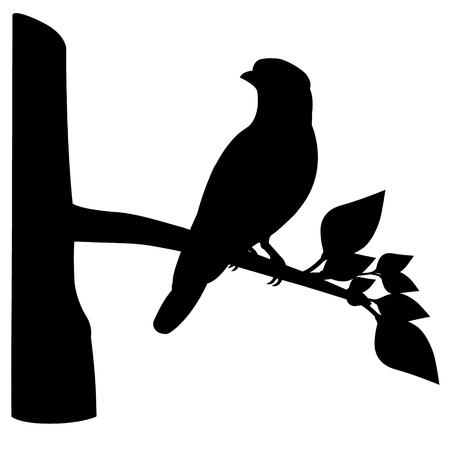 bird shape vector design Illustration