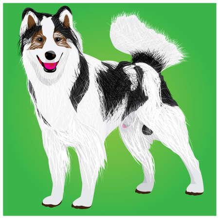 lovely dog vector design Illustration