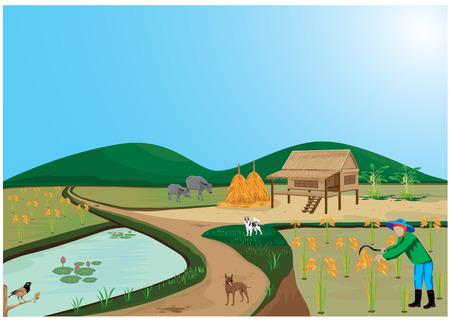 pitchfork: farmer harvest rice vector design