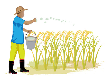 fishing village: farmer manure rice plant vector design