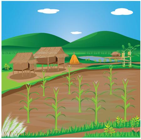 countryman: lifestyle of countryside vector design