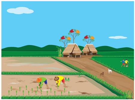 harrow: lifestyle of farmer vector design