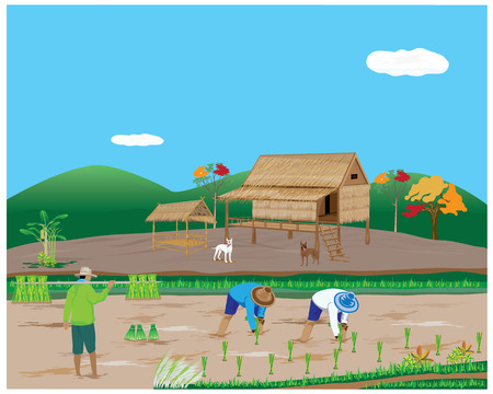 seeding: lifestyle of agriculturist vector design
