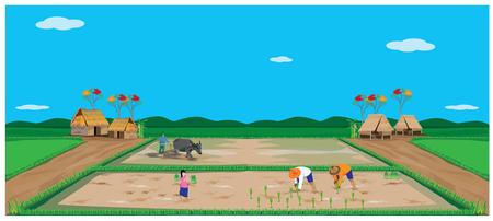 paddy field: lifestyle of farmer vector design