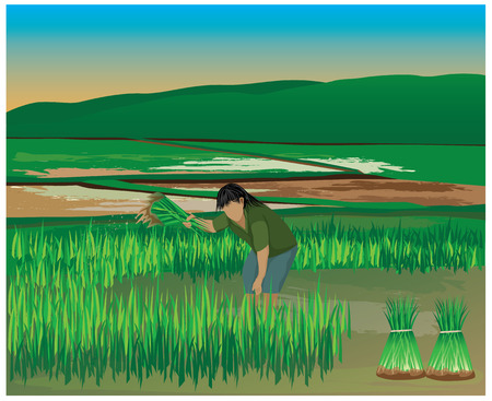 seeding: lifestyle of farmer vector design