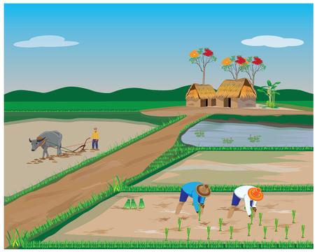 lifestyle of farmer vector design