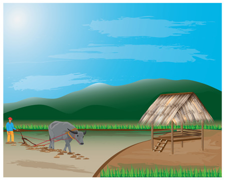 plow: farmer plow in paddy field vector design