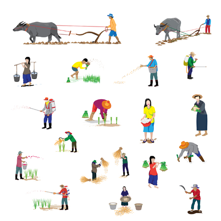 paddy field: lifestyle of farmer shape vector design Illustration