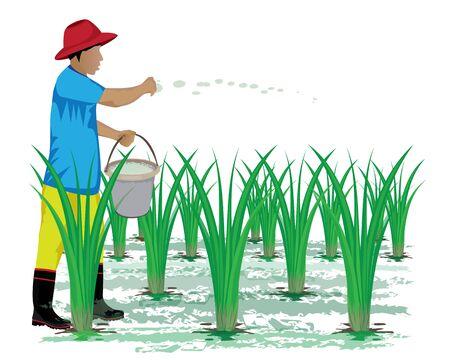Rijst plantage vector ontwerp Stock Illustratie