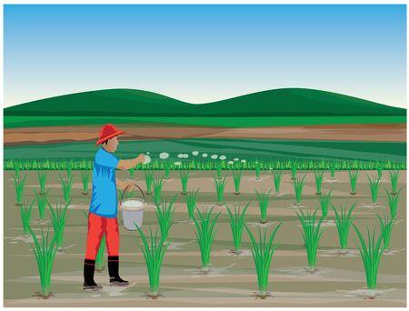 farmer manure rice plant vector design