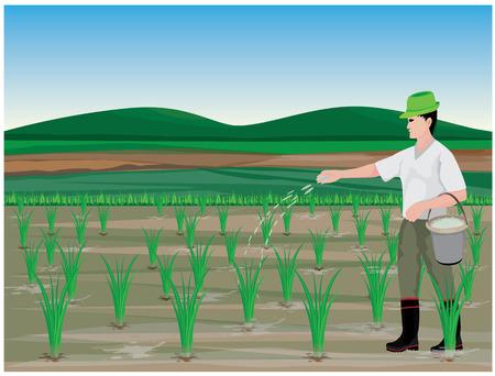 Een boerenmest rijst plant vector ontwerp illustratie. Stock Illustratie