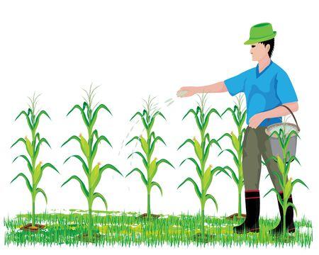 Landbouwmest maïs plant vector ontwerp illustratie. Stock Illustratie