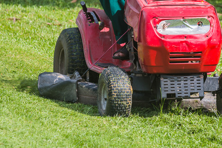 cutting: The gardener is using a lawn mower in public park