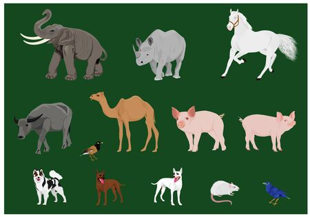 kind of animal vector design