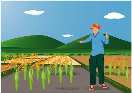 the farmer in paddy field vector design Illustration