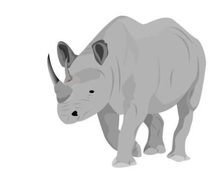 rhinoceros vector design Illustration