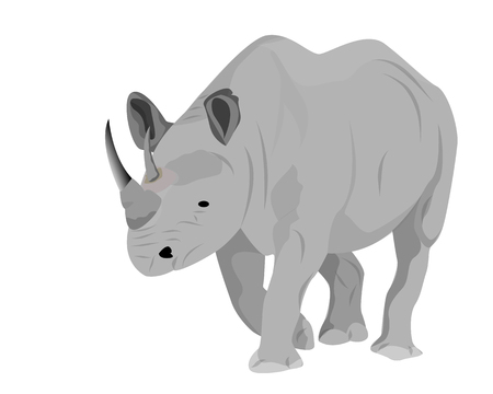 rhinoceros vector design Иллюстрация