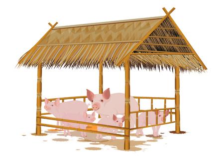 many pig in corral vector design Illustration