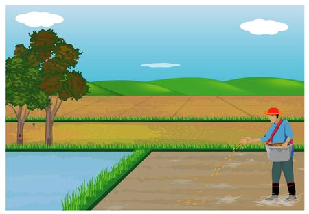 farmer sowing rice in paddy field vector design