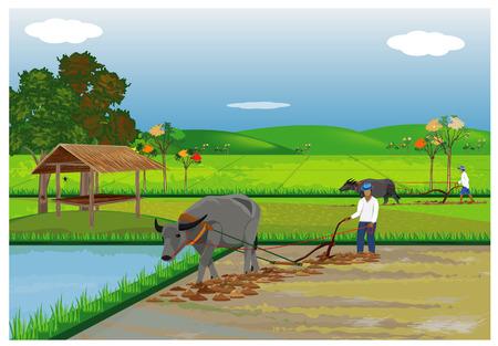 Farmer plow in paddy field vector design Stock Illustratie
