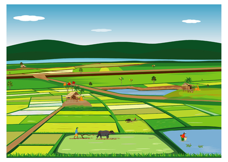farmer plow in paddy field vector design