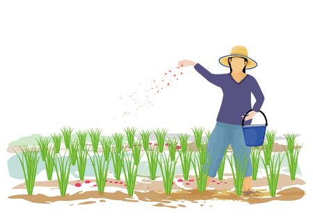 agriculteur semant du fumier dans la conception de vecteur de rizière