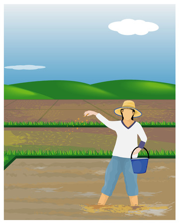 farmer sow rice in paddy field design Standard-Bild - 105389865