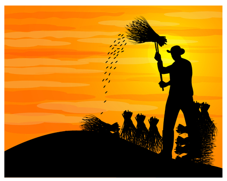 silhouette farmer hit rice vector design Illustration