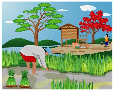 agricultor trabaja en diseño vectorial de campo de arroz